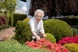 Immobilien-Leibrente für Senioren mit Haus und Garten